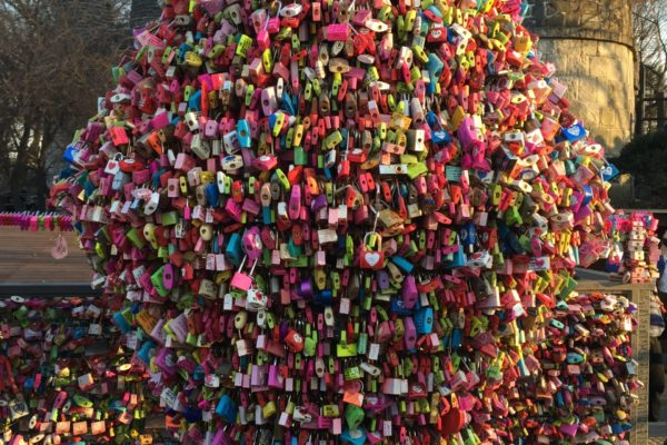 locks of love tree